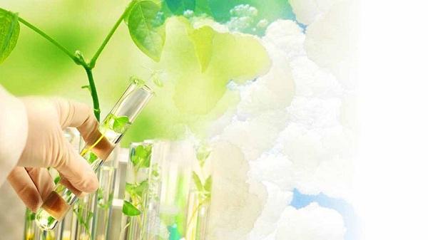 """Báo cáo chuyên đề """"Ứng dụng công nghệ sinh học để sản xuất, chế biến trong lĩnh vực Y Dược"""""""