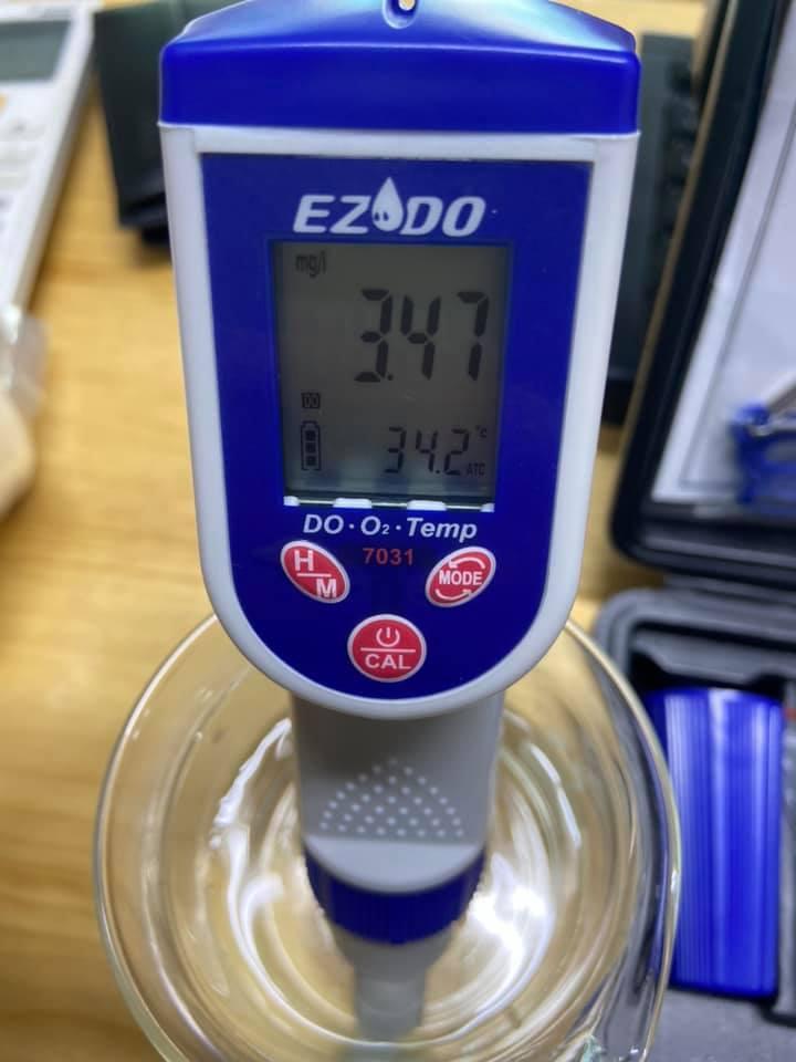 Thiết bị đo oxy hòa tan (DO)/ nhiệt độ model 7031