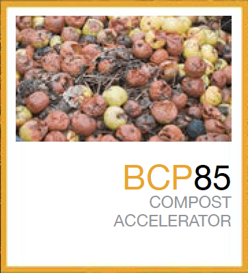 Men vi sinh ủ phân compost BCP 85
