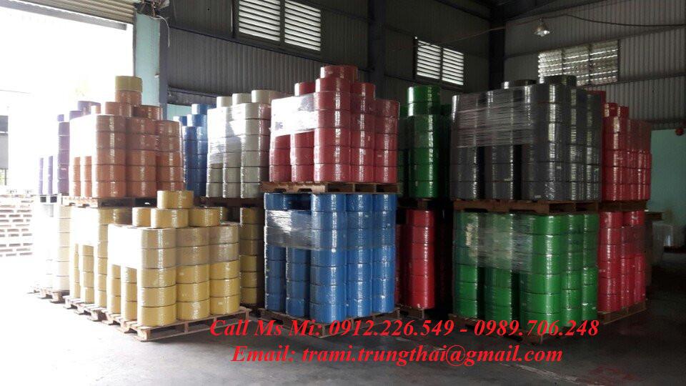 Nhà sản xuất dây đai nhựa PP