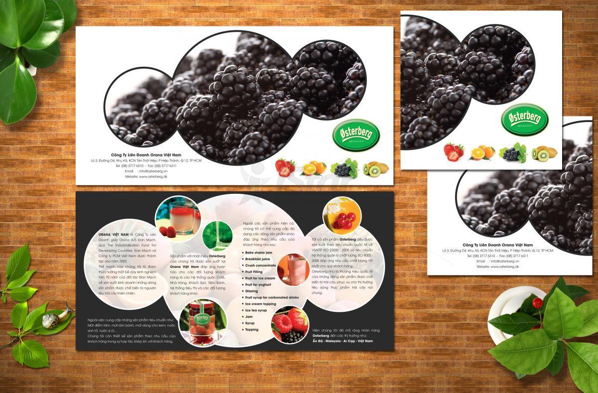 Dịch vụ in brochure