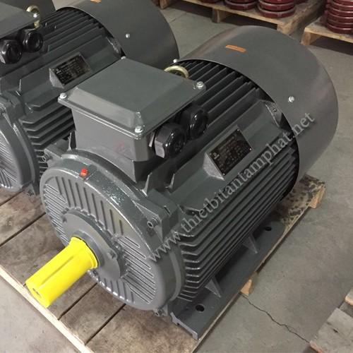 Động cơ điện Y2