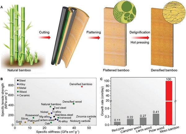 Giải pháp nguyên liệu thay thế polymer từ tre